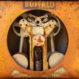 Buffalo Scale